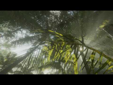 Tropical Forest Pack 1.1 beta01