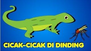 download lagu Cicak Di Dinding gratis