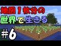 【マインクラフト】地図1枚分の世界で生きる #6 ~白樺植林場~