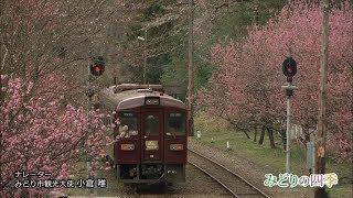 みどり市観光プロモーションビデオ「みどりの四季」