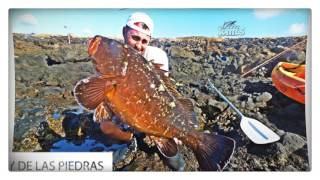 Resumen 2016 Pesca con Machado & Owner