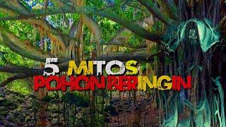 5 MITOS TENTANG POHON BERINGIN