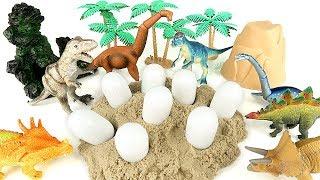 공룡메카드! Who's Dinosaur Eggs? 타이니소어 공룡알! Real Dinosaur T Rex, Triceratops, Brachiosaurus.