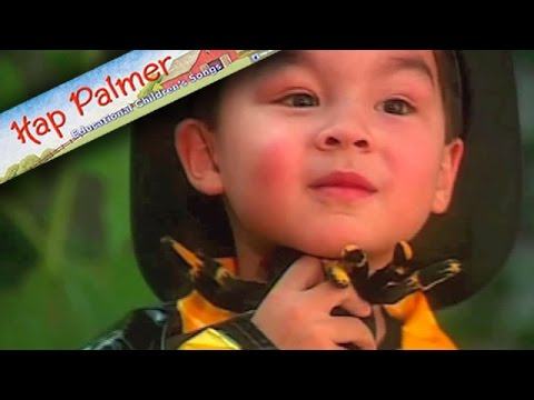 The Itsy Bitsy Spider Hap Palmer Wwwhappalmercom
