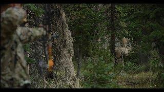 Wyoming Elk Hunt (Day 2) - The \