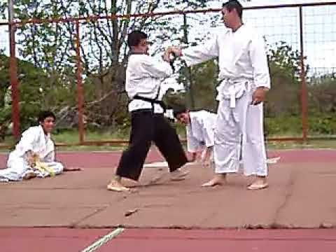 TECNICAS DEFENSA PERSONAL TANG SOO DO