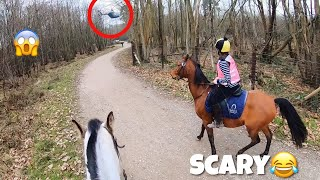 Meeting a Scary HELICOPTER & being a Naughty boy | GO PRO | equinemollie
