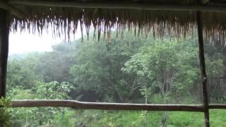 8 Stunden Relax Sturm und Thunder wie die reale regen Schlafen zu sehen und zu fühlen