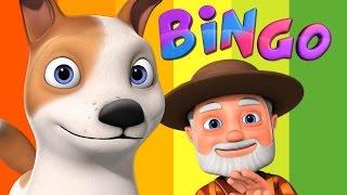 Bingo Dog Song | Videogyan 3D Rhymes | Bingo Rhymes For Children