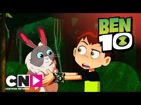 Бен 10 | Новый питомец | Cartoon Network