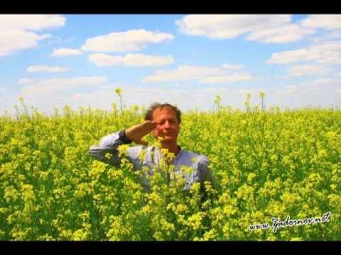 Владимир Качан - Грустный заяц