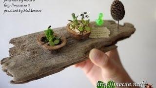 bonsais, bonsais de interior, venta de bonsais, bonsais baratos