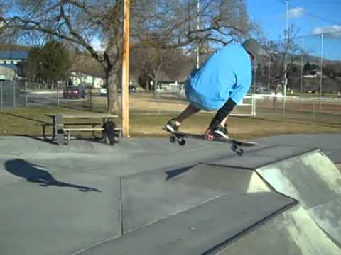 SKATING A LONGBOARD IN SKATEPARKS