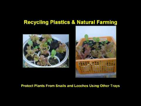 Recycling & Natural Farming