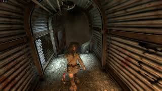 Rise Of The Tomb Raider ® Direct X 12 Part 5
