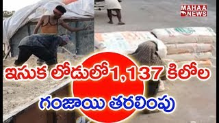 Police Caught Red-Handed Ganja Exporting Lorry In Vijayawada | MAHAA NEWS