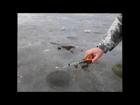 ловля карася все сезоны видео