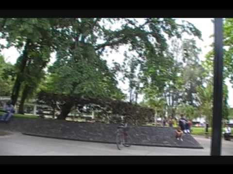 Puerto Cortes honduras