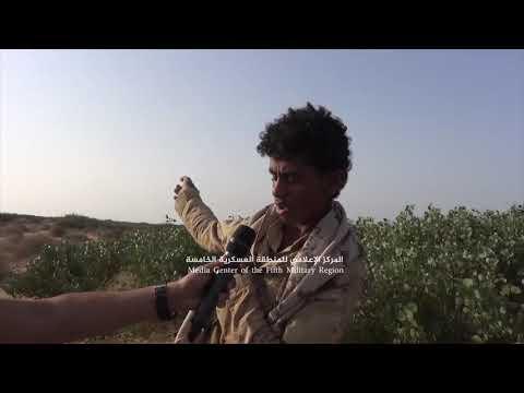 فيديو: الجيش اليمني يعثر على جريح حوثي بعد انتهاء المعارك بيومين في جبهة ميدي.. وهذا ماحصل له