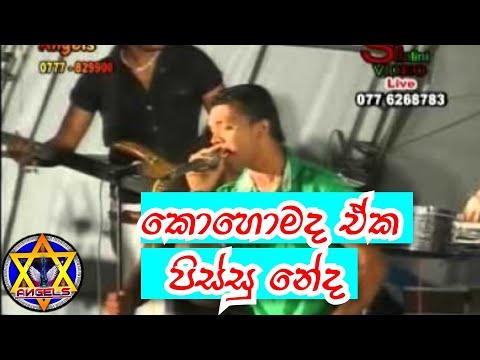 Saiyaan Ve - Ta Ra Rum Pum / ANGELS  band / katuneriya /jana jaya mela