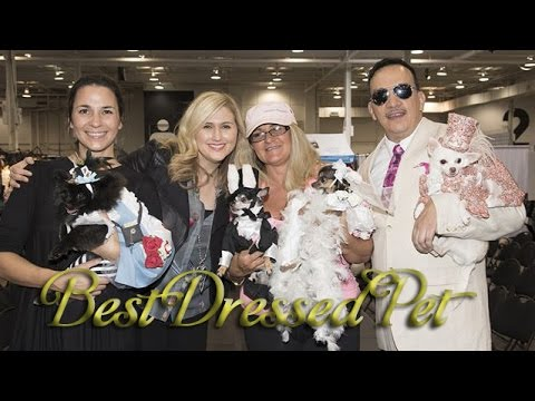 Best Dressed Pet with Jennifer Valentyne and Anthony Rubio / Показ одежды для животных