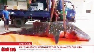 Xử lý nghiêm vụ ngư dân xẻ thịt cá nhám voi quý hiếm