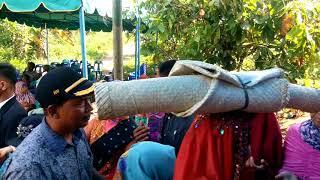 Download Lagu Pesta pernikahan adat suku batak pakpak di kabupaten pakpak bharat(SUMUT) Gratis STAFABAND