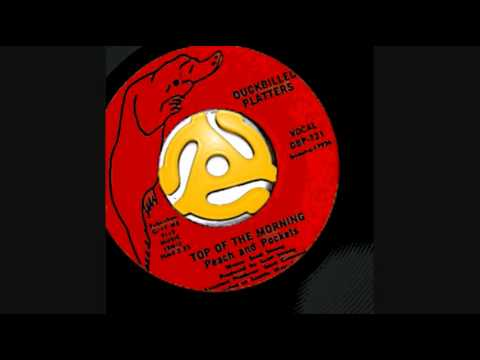 Top of the Morning - Peach and Pockets 45