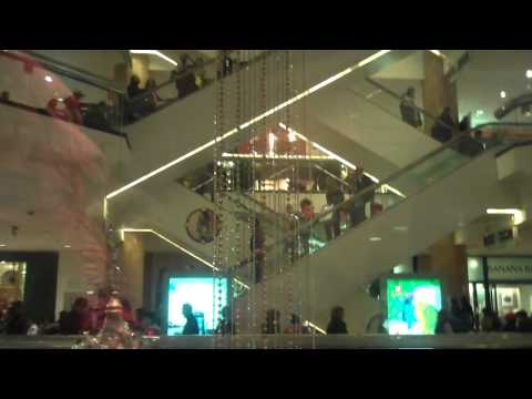 Otis Glass Elevator at Water Tower Place Mall in Chicgao,IL