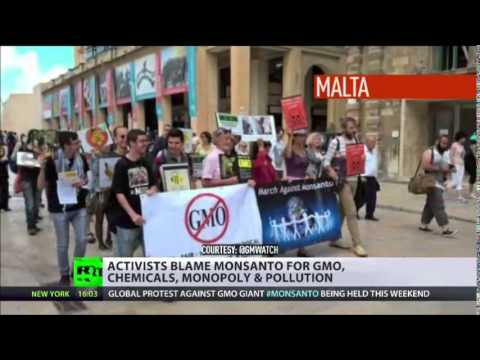 WORLD stands up against Monsanto 'Over 400 cities protest GMOs'