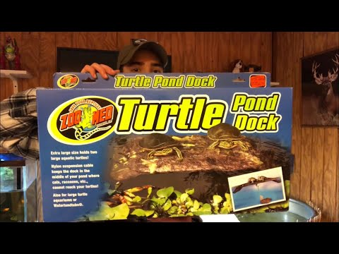 HUGE Aquatic Turtle Dock Installation