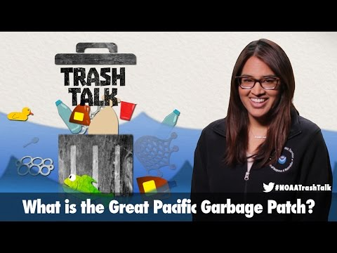 TRASH TALK: What is the Great Pacific Garbage Patch?