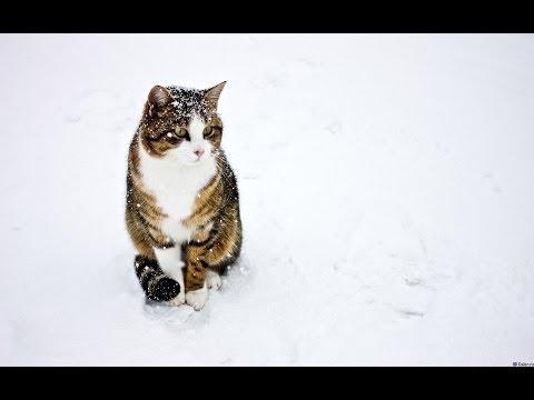 Зима 2014, г. Капчагай.