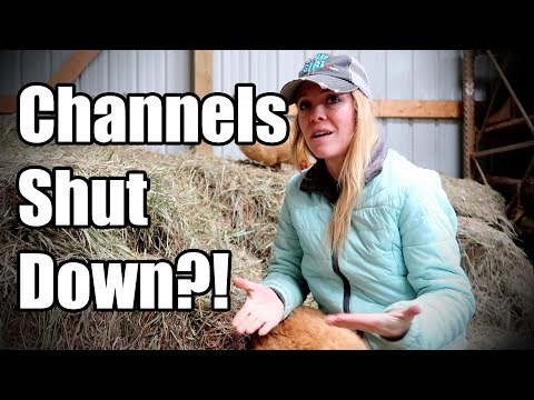 YouTube Channels Risk Being Shut Down - Listen UP!