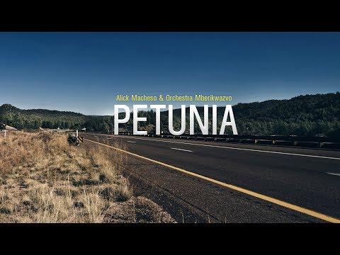 Alick Macheso - Petunia (2000)