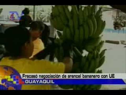 Fracasó negociación de arancel bananero con UE