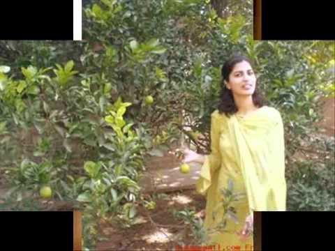 Wo Ladki Nahi Zindagi Hai Meri video