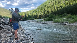 Fly Fishing TINY Rivers in MONTANA!