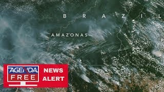 Amazon Fires Stirring International Concern - LIVE COVERAGE