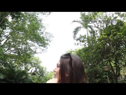 Popular Angels Trip - Tata in Ragunan Zoo