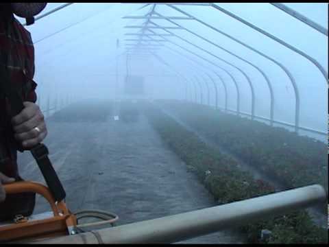 PulsFOG K-22 in Hoop House