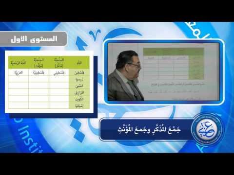 درس جمع المذكر والمؤنث من دروس معهد عربي للغة العربية