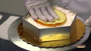 Mango Mousse Cake - English