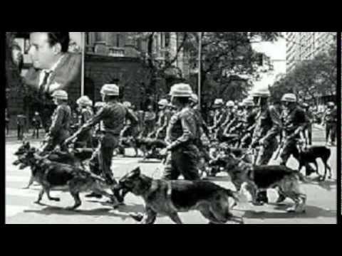 Military Regime in Brazil (Oral History Report)