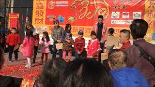 NYC Chinese New Year of the Pig Part 2 - Vui Xuân Đón Tết Kỷ Hợi Phần 2
