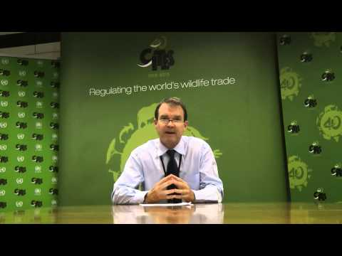 CITES Secretary-General's video message to the Saker Falcon Taskforce Workshop