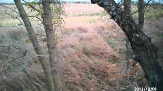 10/8/2011 Bowhunt In Northeast South Dakota