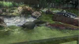 Jardin Japones recorrido virtual 3D