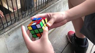 Cubing with cute animals
