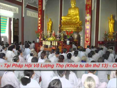 Vai trò của Đức Phật đối với nhân loại
